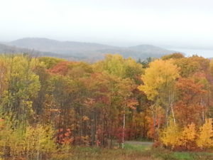 Fall Foliage and Rattlesnake Island