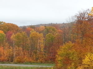 Fall Foliage and Barn Door Islands